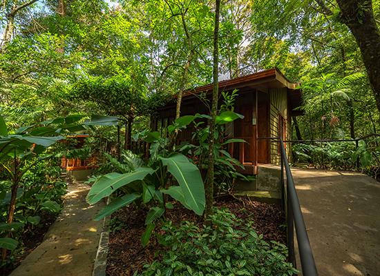Portada Jaguarundi Lodge